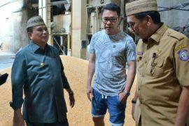 Pemprov Gorontalo Temukan Perbedaan Alat Ukur Kadar Air jagung