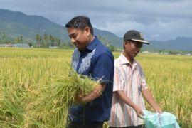 Pemkab Bone Bolango Tingkatkan Kapasitas Kelembagaan BUMDes