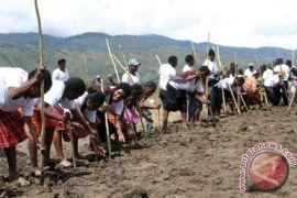 Bantuan Kemensos Menjangkau Warga Krisis Pangan Maluku
