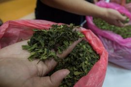 Polisi Periksa CCTV Kasus Narkoba Cucu Konglomerat