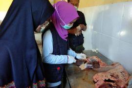 Disnakkeswan Pastikan Daging Kurban Aman Konsumsi