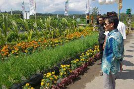 Bupati Gorontalo Dorong Pelaksanaan Festival Kelapa Internasional