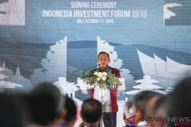 Darmin: Moratorium Izin Hutan Sawit Untuk Pembenahan
