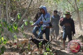 Mirisnya Nasib Hutan Di Pulau Sumbawa