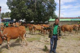 Pemkab Gorontalo Apresiasi Peran Peternak Dalam