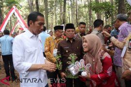 Presiden Bagikan 91.998 Hektar SK Perhutanan Sosial Jambi