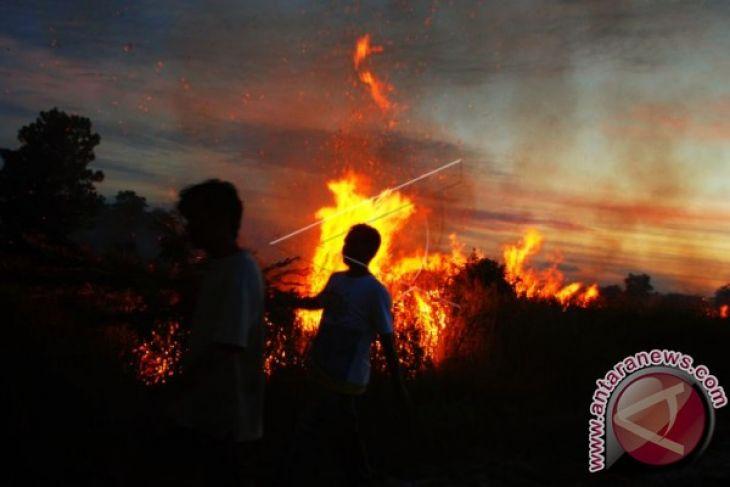 Kebakaran hancurkan situs arkeologi kuno di Peru