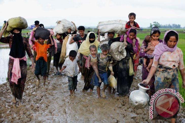 Gedung Putih risau dengan krisis Rohingya