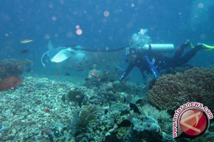 Indonesia peringkat tiga besar wisatawan digital dunia