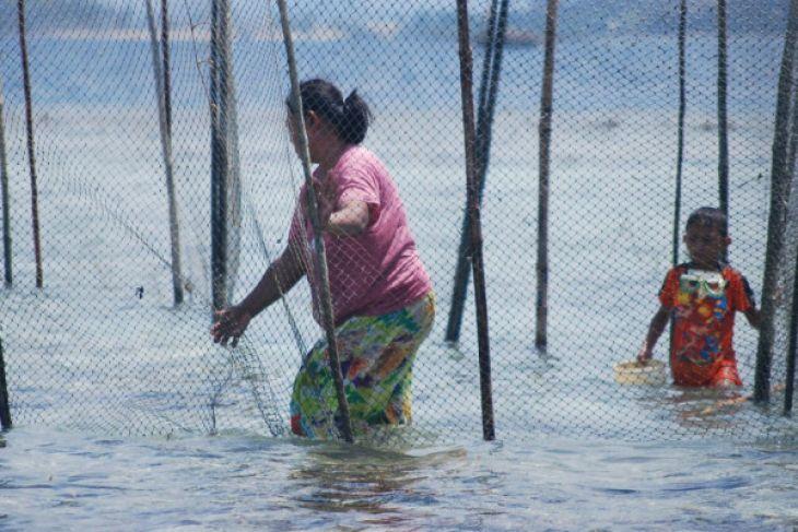 DPRD Optimistis Pengelolaan Sumber Daya Perikanan Optimal