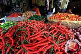 Harga cabai Jambi naik karena pasokan berkurang