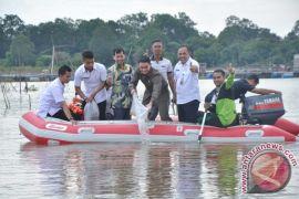 3.000 ikan hias Botia dilepas liarkan