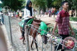 Taman Rimba Jambi operasikan tiga loket pengunjung