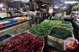 Bahan Makanan Penyumbang Inflasi Terbesar Di Jambi