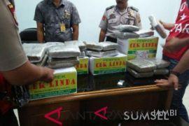 Polisi Palembang selidiki penyelundupan ganja