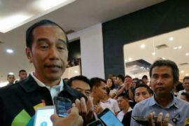 Presiden: peremajaan kelapa sawit di Indonesia terlambat