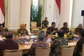 Presiden Jokowi respon usulan pengangkatan tenaga honorer Kategori 2