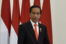 Presiden sosialisasikan PPH UMKM pada puncakj hari Koperasi