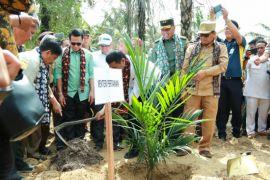 Mentan dukung peremajaan kelapa sawit petani di Jambi