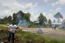 2.005 hektare lahan dan hutan Kalsel terbakar