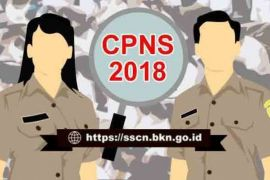 SKD CPNS Batanghari digelar 5-7 November