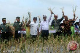 Konsolidasi mahasiswa pertanian hasilkan deklarasi Bogor