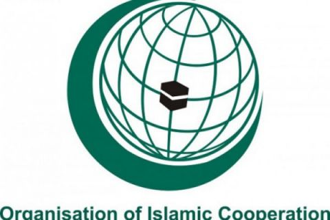 OKI upayakan pasokan vaksin dari negara muslim
