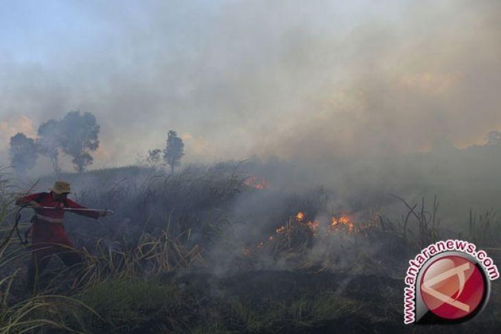 Pemerintah: pengendalian karhutla di Jambi harus terpadu