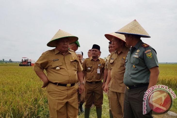Tanjabbar fungsikan lahan sawit jadi pertanian
