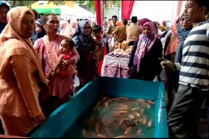 DKP Jambi pastikan harga ikan tetap stabil (video)