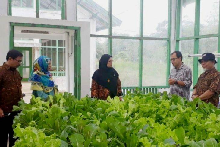 Dr Eliyanti pimpin Perhimpunan Agronomi Indonesia Komda Jambi