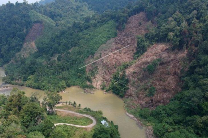Pembalakan Taman Nasional Kerinci Seblat
