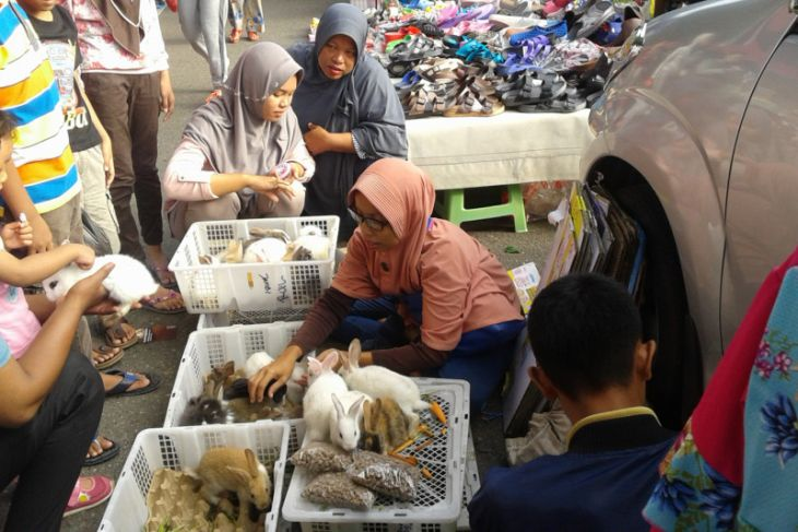 Pedagang kelinci edukasi anak untuk beternak