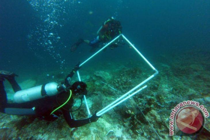 COREMAP hadirkan empat lembaga sertifikasi pemonitor karang