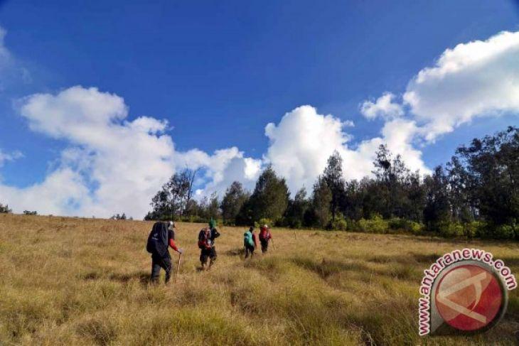 Jalur Pendakian Gunung Argopuro Akhirnya Dibuka Kembali