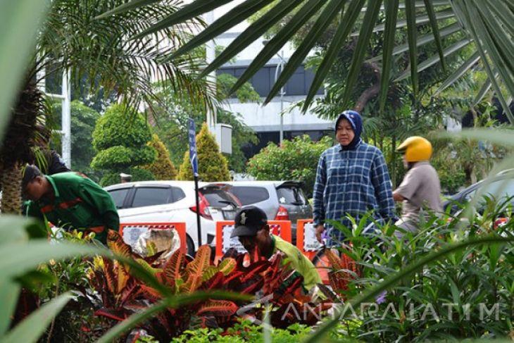 Keberhasilan Wali Kota Surabaya Tutup Dolly Jadi Contoh