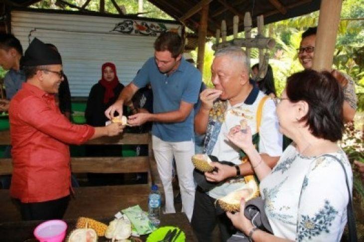 Ke Kampung Durian Banyuwangi Yuk! (Video)