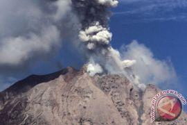 17 Gunung Api Berstatus Waspada Selama Agustus