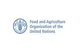 Petani Muda Asal Lembang itu Dapat Penghargaan FAO