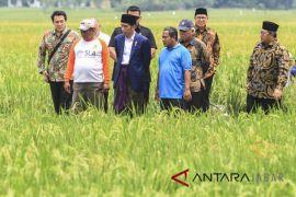 Presiden Tinjau Pembangunan irigasi