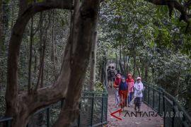 Ngabuburit di Forest Walk Bandung