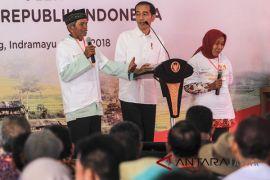 Petani Indramayu sambut program Presiden terkait pertanian