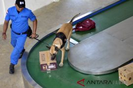 Simulasi anjing pelacak K-9 BNN