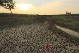 BPBD: Kawasan utara Garut terparah dilanda kekeringan