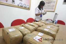 Polres Cirebon gagalkan peredaran empat kilogram ganja