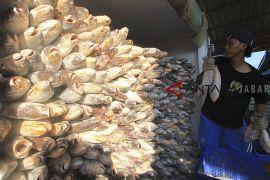 Nilai tukar nelayan naik