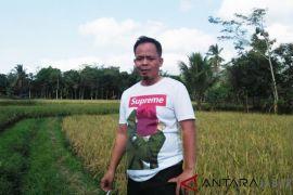 Ampuh Cianjur menilai aliran dana tidak bermuara di Bupati Irvan