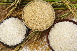 Beras organik dari Garut tembus Pasar Swalayan