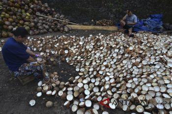 Nilai ekspor kopra naik