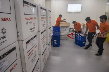 Ekspor vaksin Bio Farma
